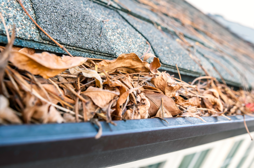 The importance of cleaning your gutters