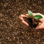 Easy composting at home