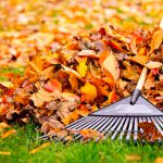 Fall and winter lawn preparation