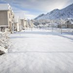 Keep your lawn in shape all winter