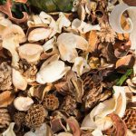 Make Your Own Potpourri and Save Money